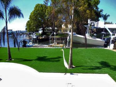 Artificial Grass Photos: Artificial Turf Installation Agoura, California Garden Ideas, Backyard
