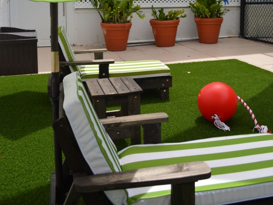 Artificial Grass Photos: Artificial Turf Moorpark, California Rooftop, Roof Top