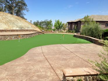 Artificial Grass Photos: Artificial Turf Redondo Beach, California Indoor Putting Greens, Backyard Landscape Ideas