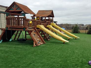 Best Artificial Grass Piru, California Backyard Playground, Commercial Landscape artificial grass