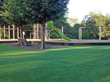 Artificial Grass Photos: Fake Grass Bradbury, California City Landscape, Recreational Areas