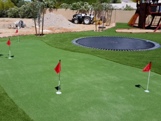 Artificial Grass Photos: Fake Grass Carpet Inglewood, California Best Indoor Putting Green, Backyard Design