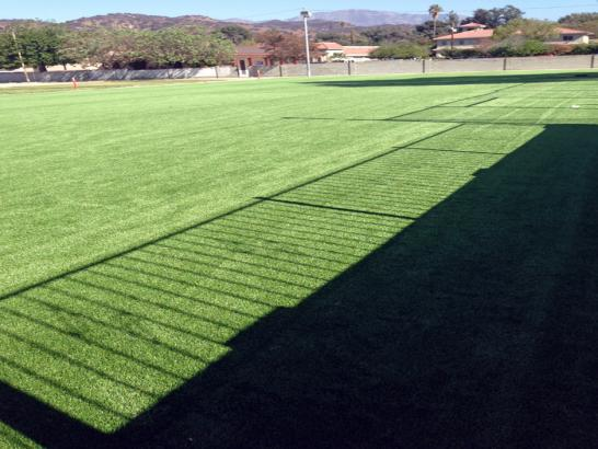 Artificial Grass Photos: Fake Grass Covina, California Landscape Design