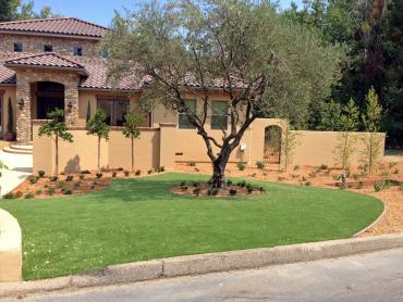 Artificial Grass Photos: Fake Grass South Whittier, California Roof Top, Front Yard Landscaping