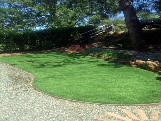 Artificial Grass Photos: Faux Grass Bradbury, California Garden Ideas, Backyard Landscaping