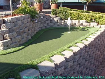 Grass Installation Saticoy, California Garden Ideas, Beautiful Backyards artificial grass