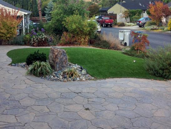 Artificial Grass Photos: Grass Turf Cerritos, California Landscape Photos, Landscaping Ideas For Front Yard
