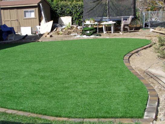 Green Lawn Nipomo, California City Landscape, Backyard Landscaping Ideas artificial grass