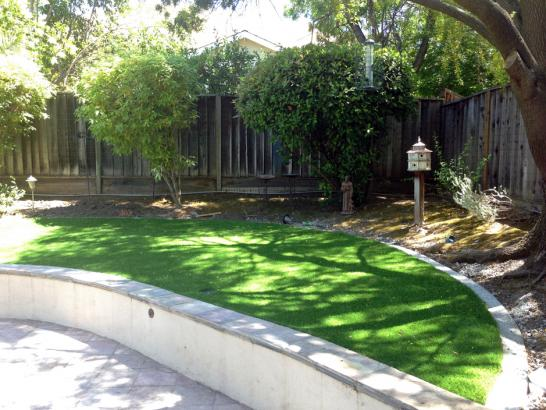 Artificial Grass Photos: Outdoor Carpet Maricopa, California Landscape Ideas, Commercial Landscape