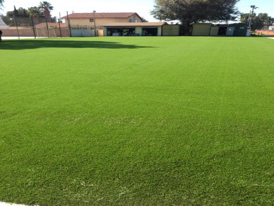 Artificial Grass Photos: Plastic Grass Bear Valley Springs, California Lawn And Landscape, Recreational Areas