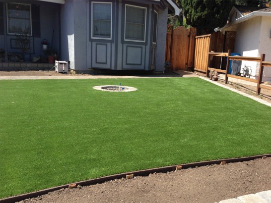 Synthetic Grass Oxnard Shores, California City Landscape, Small Backyard Ideas artificial grass