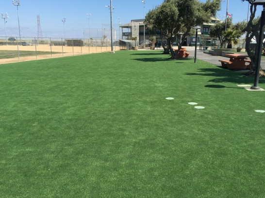 Synthetic Lawn Del Aire, California Landscape Rock, Recreational Areas artificial grass