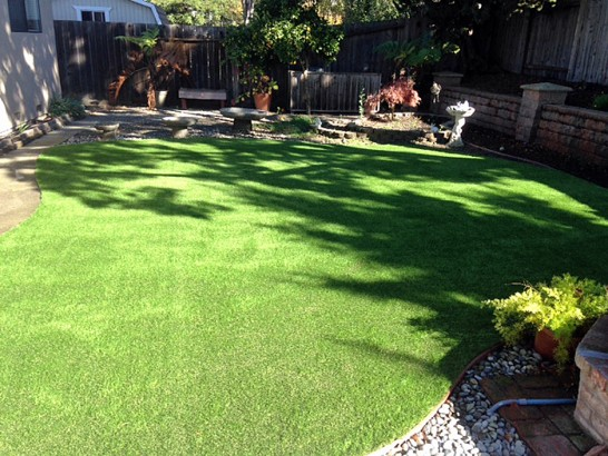 Artificial Grass Photos: Synthetic Lawn Sugarloaf Village, California Dogs, Backyard