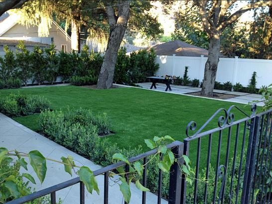 Synthetic Turf Phelan, California Design Ideas, Landscaping Ideas For Front Yard artificial grass