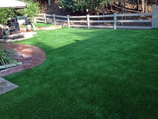 Artificial Grass Photos: Synthetic Turf Supplier Garey, California Watch Dogs, Backyard Landscaping Ideas