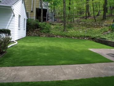 Artificial Grass Photos: Synthetic Turf Supplier Orcutt, California Backyard Playground, Front Yard