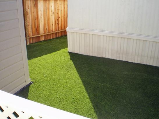 Artificial Grass Photos: Turf Grass Mexican Colony, California Lawn And Landscape, Backyard Ideas